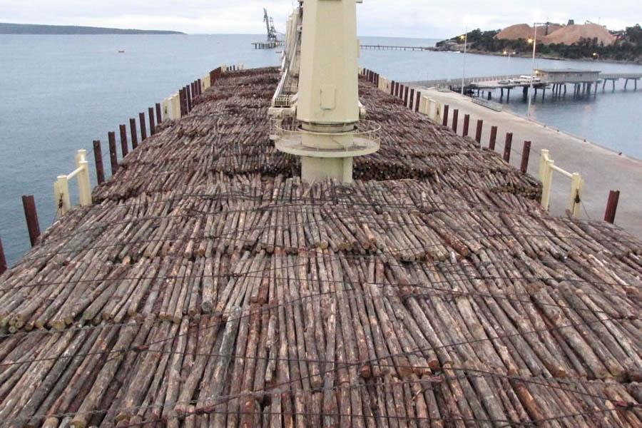 Deck-Logs-Secured