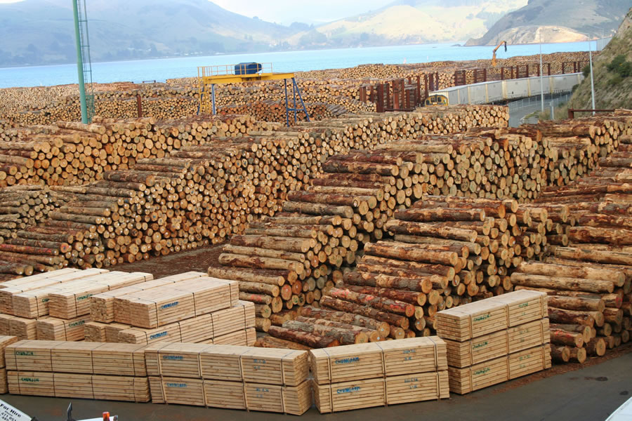 Forestry_timber_wood_logs_dl_expo